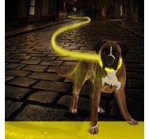 Seecurity Flash Light Ring Honden Halsband maat L