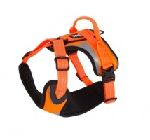 Hurtta Dazzle Harness orange