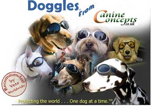 Doggles zon en beschermbril chrome honden