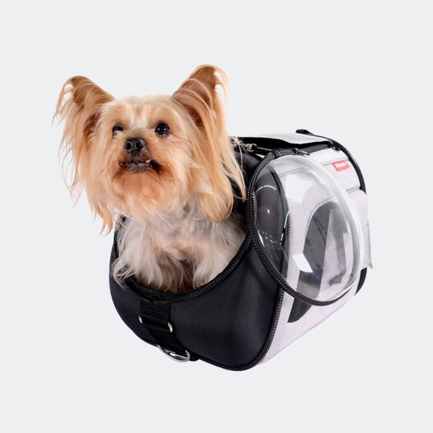 Ibiyaya Explorer Airline met hond