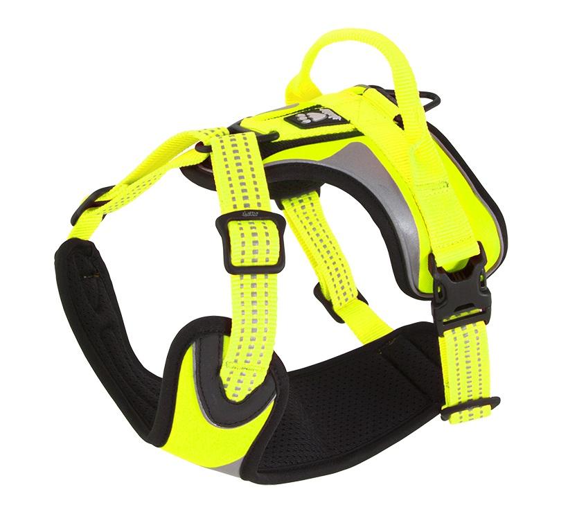 hurtta dazzle harness